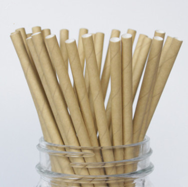 Planet Friendly Parties Biodegradable Paper Straws Pack (25pc)