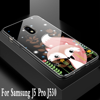 For Samsung Galaxy J5 2017 case Luxury Tempered Glass cute back Silicone Bumper phone cases For Samsung J5 Pro 2017 J530F cover
