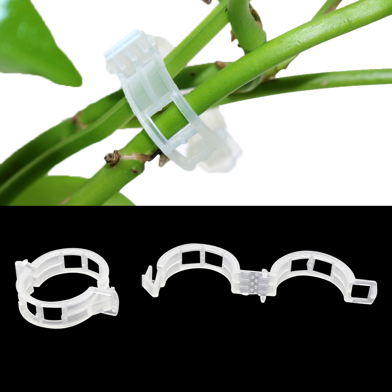 Greenhouse Plant Fixing Clips Garden Plants Flowers Tied Bundle Branch Clip Clamping Tools Garden Supplies Plant Clips 50 Pcs