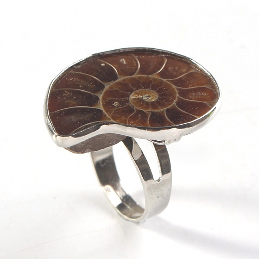 Trendy beads Unique Silver Plated Adjustable Ammonite Ring Fashion Natural Ammonite Reliquiae Jewelry in Rings from Jewelry Accessories
