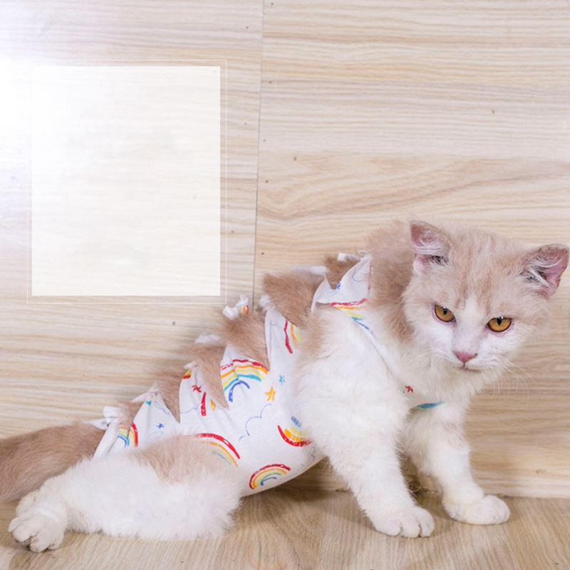 Etdane Cat Onesies Surgery Recovery Suit Abdominal Wounds Protector Post-Operative Shirt Pet E-Collar Alternative Vest for Home Leopard Print Small