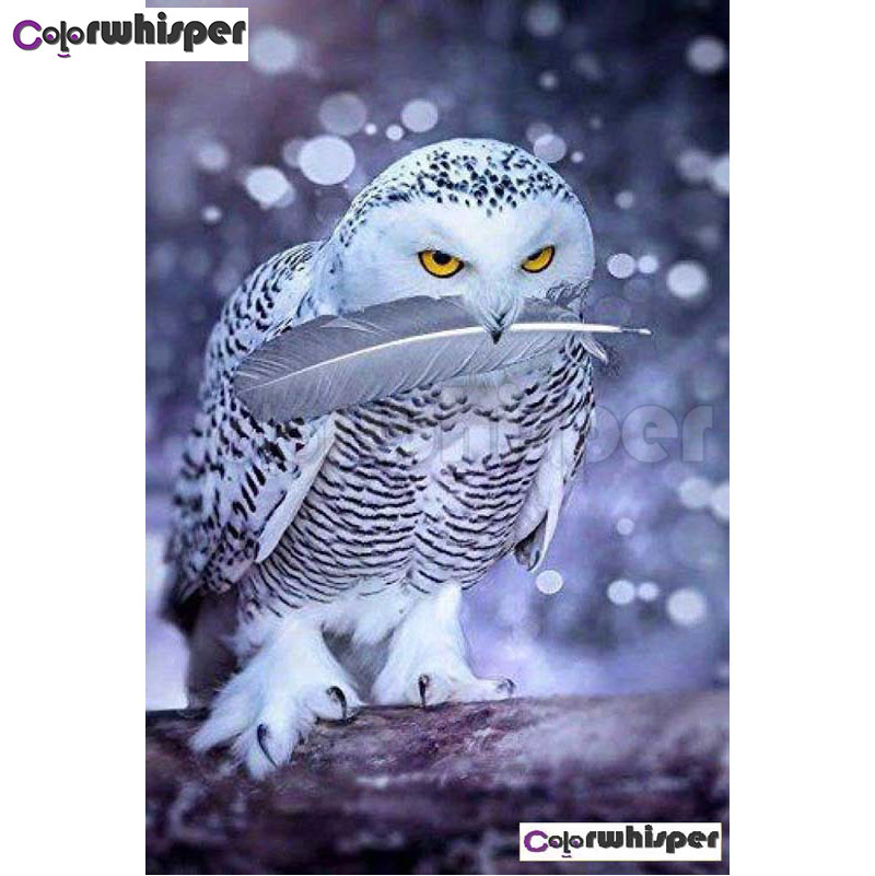 Diamond Painting Full Square/Round Daimond Painting White Owl with Feather In Mouth Mosaic Rhinestone Embroidery Painting 009QW