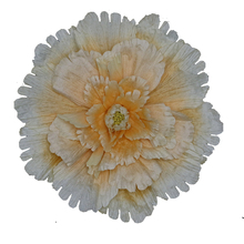 Large-scale simulated flowers, peony silk flowers wedding background flower wall decoration window counter display