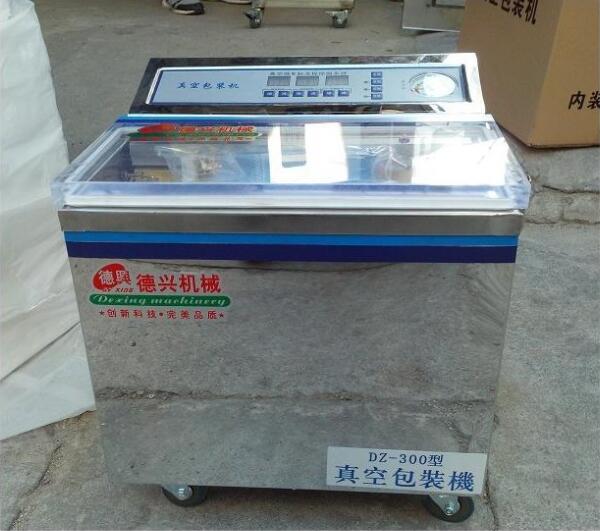 DZ-300 Food Vacuum Packaging Machine,Meat, Cooked Food, Dry Goods, Fruit Home Vacuum Sealing Machine