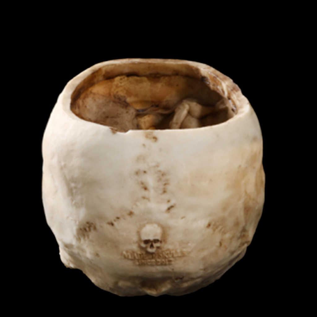 2 조각 인간의 해골 머리 디자인 꽃 냄비 화분 할로윈 파티 장식 홈 바 DIY 장식 침실 장식