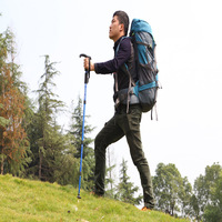 Free Shipping Outdoor Camping Mountaineering Hiking Trekking Trail Poles Ultralight 4-section Adjustable Canes Walking Stick