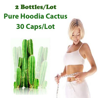2 Packs Supply Nature Hoodia Cactus Extracts Burn Fat Appetite Control Pure Hoodia Gordonii Extracts