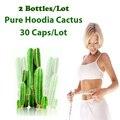 (2 Packs Fonte) Natureza Hoodia Cactus Extractos queimar gordura controle do apetite Hoodia gordonii Puro extratos de 2 meses de uso