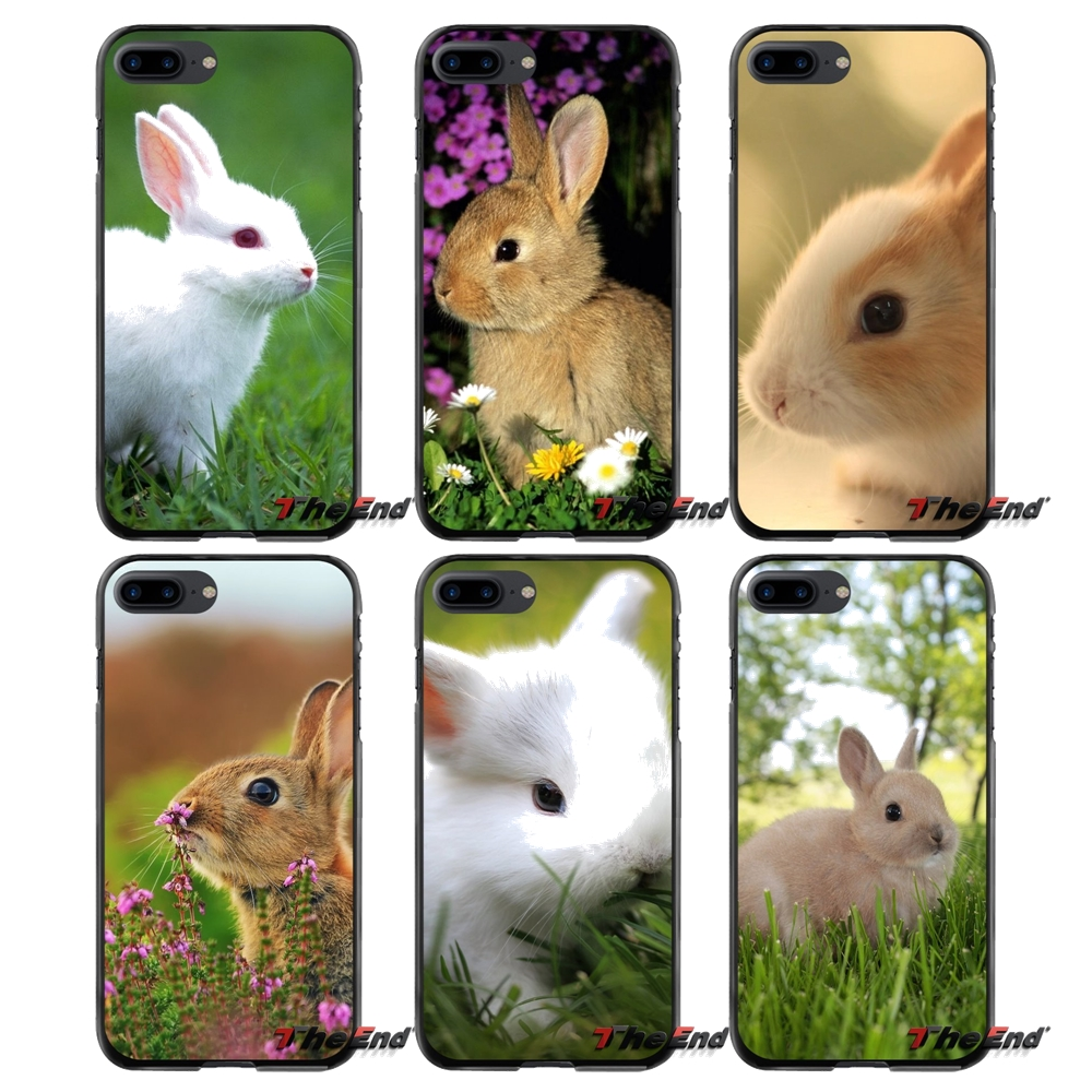 Accessories Phone Cases Covers Pretty Rabbit For Apple iPhone 4 4S 5 5S 5C SE 6 6S 7 8 Plus X iPod Touch 4 5 6