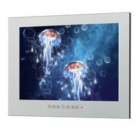 IP66 мультимедиа YAMET 22 дюймов Зеркало водонепроницаемый ТВ Ванная комната Зеркало LED ТВ