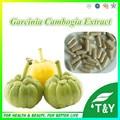 100% Natural e Puro Extrato de Garcinia Cambogia 65% Cápsula 500 mg * 700 pcs