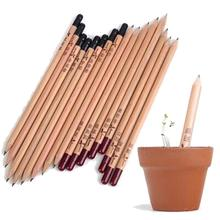 8PCS Idea Germination Pencil Set To Grow Sprouted Mini DIY Desktop Potted Plant