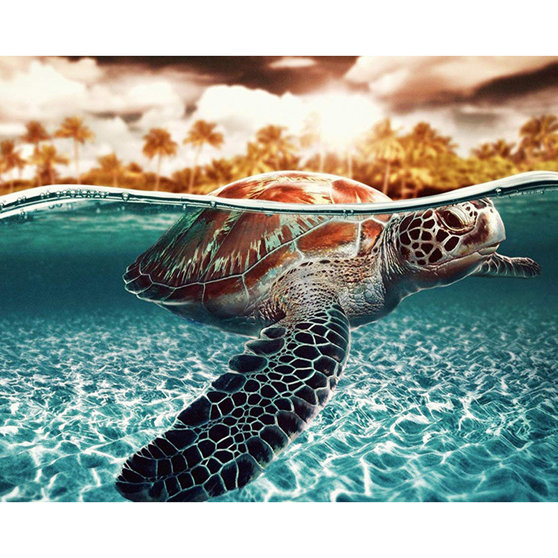 DIY Digital Painting By Numbers turtle oil painting mural Kits Coloring Wall Art Picture Gift frameless