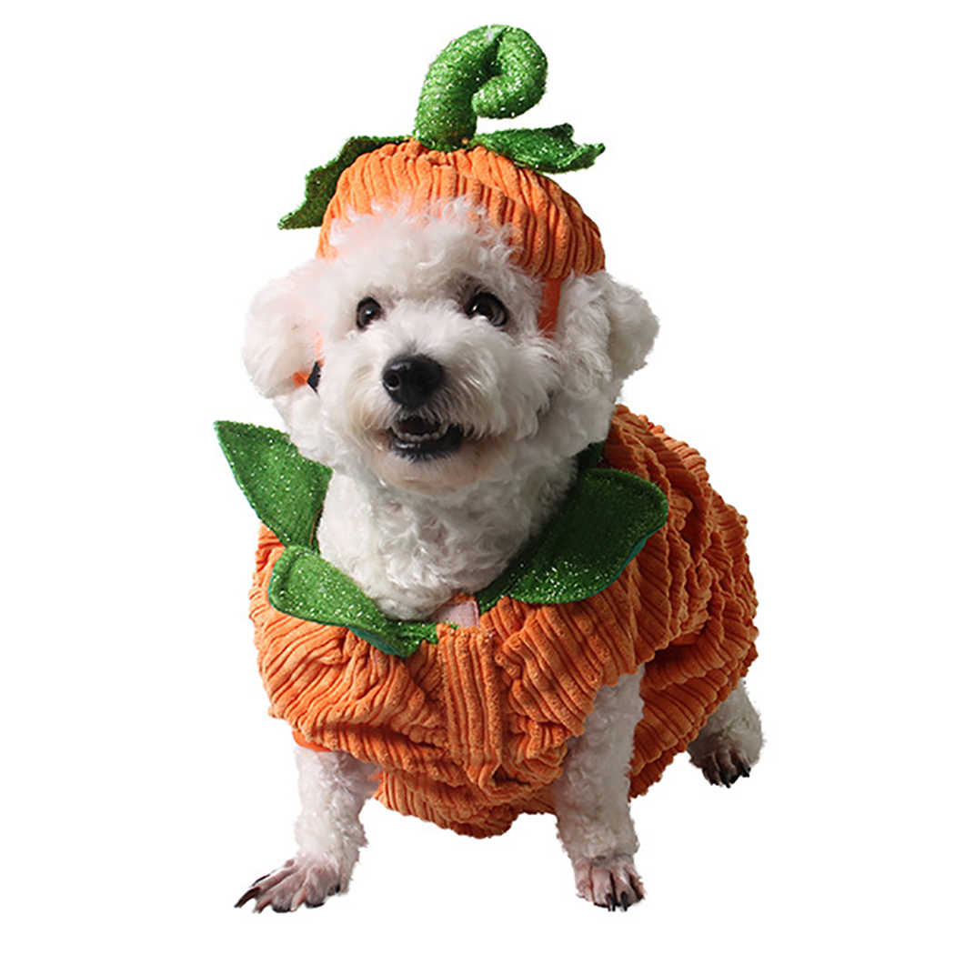 Dog Apparel Pumpkin Design Creative Funny Pet Clothing Dog Halloween Costume with Pumpkin Hat