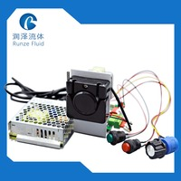 170ml/min PH Metering Peristaltic Pump 24v Stepper Motor with Drive Easy Operation
