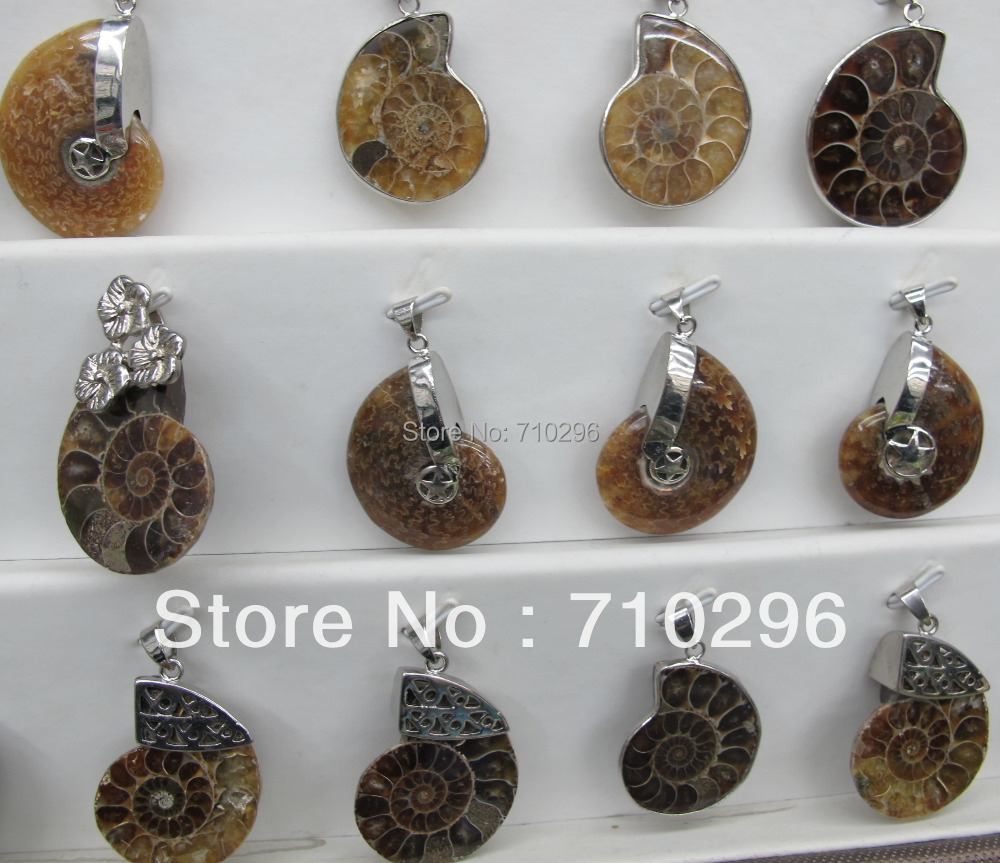 Wholesale 12pcslot natural ammolite fossil pendant gem stone wholesale 12pcslot natural ammolite fossil pendant gem stone ammolite pendants for jewelry making in pendants from jewelry accessories on aliexpress mozeypictures Images