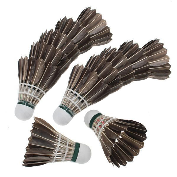 12x Training Black Goose Feather Shuttlecocks Birdies Badminton Balls Game Sport