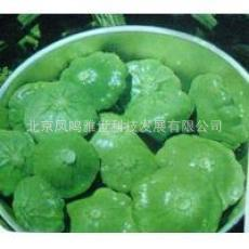 Ingot green squash seeds - good appearance and eating raw food 5 seed