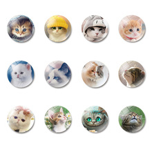 1pc Cute cat 25MM refrigerator stickers pet glass dome note clip magnetic home decoration