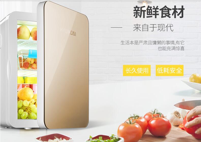 chinaguangdong HYUNDAI  20L car home refrigerator mini fridge 220V home appliance