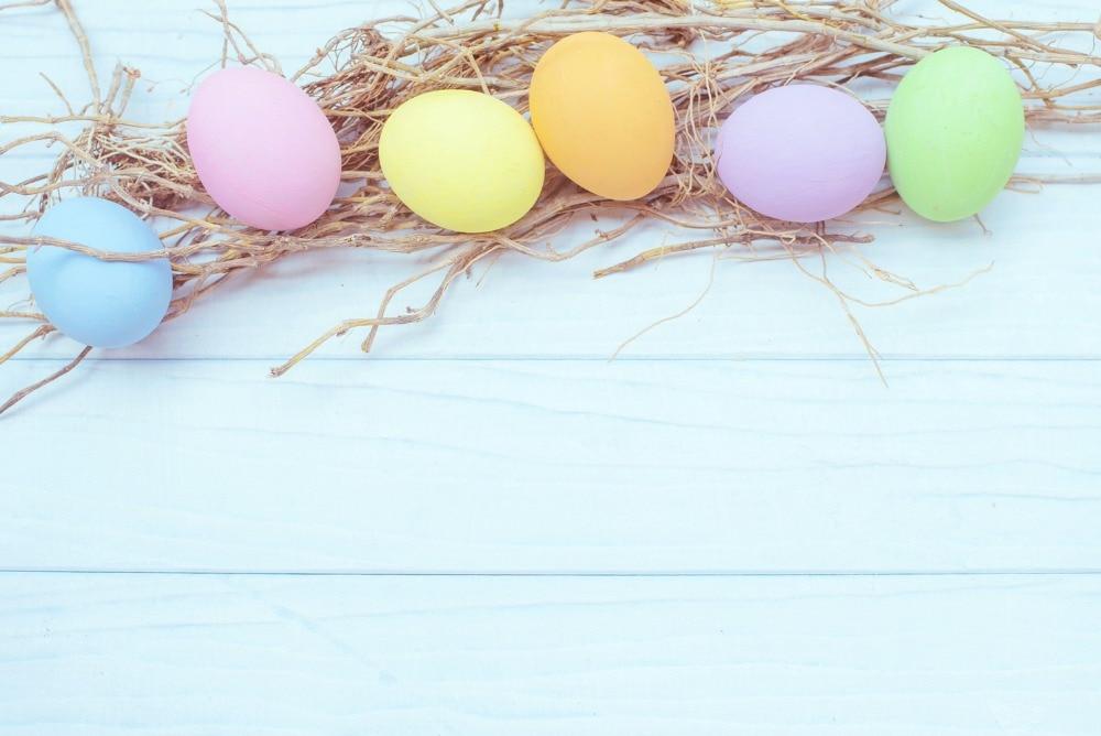 생명의 매직 박스 컬러 계란 나무 보드 150x200cm 사진 배경 시트 부활절 배경 사진 J02882 부활절 배경 나무 배경