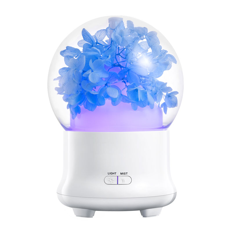 air humidifier (10)