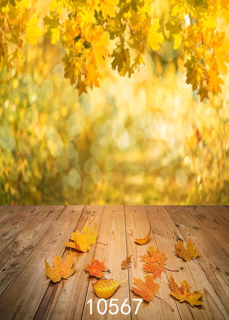 SJOLOON 가을 사진 배경 p 사진 배경 5x7ft 사진 - 스튜디오 - 배경 스튜디오 사진 vinyle