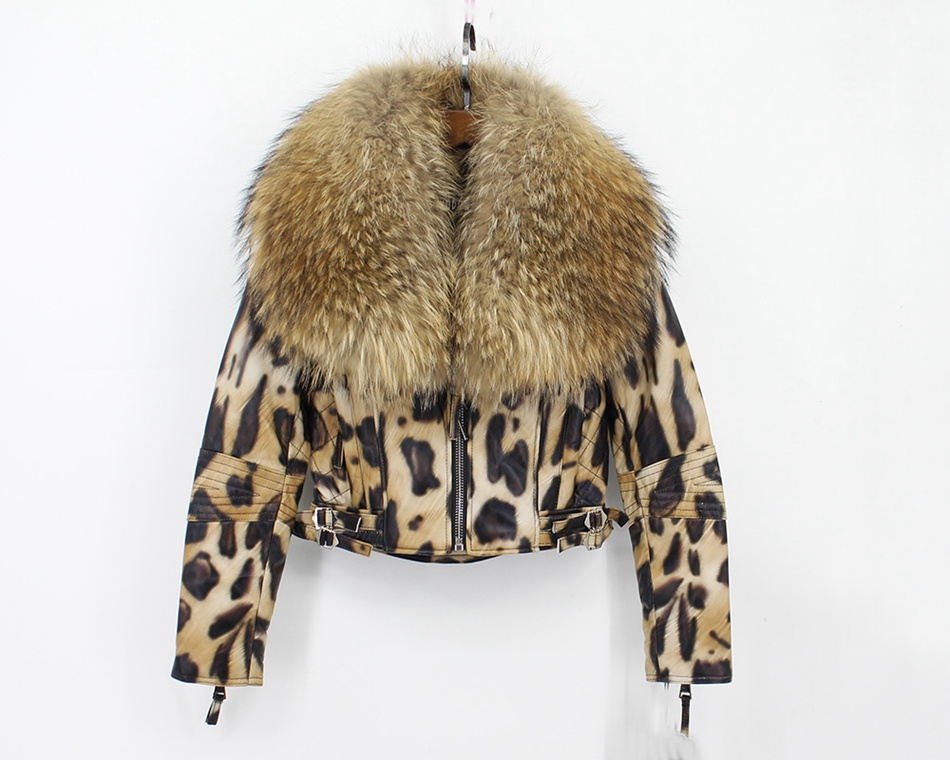 women 100% genuine sheepskin leather jacket with big raccoon fur collar  (1)