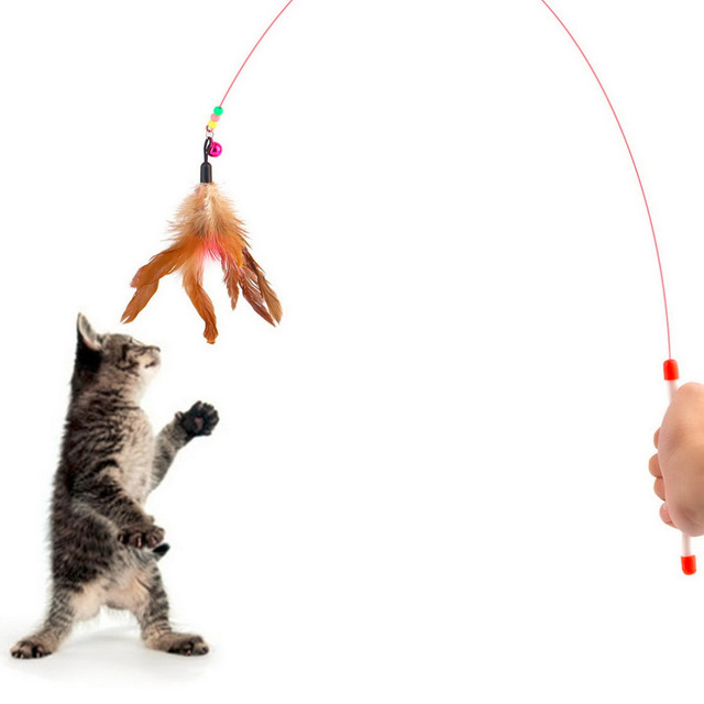 Pet cat toy Cute Design Steel Wire Feather Teaser Wand Plastic Toy for cats Color Multi Products For pet New Arrival