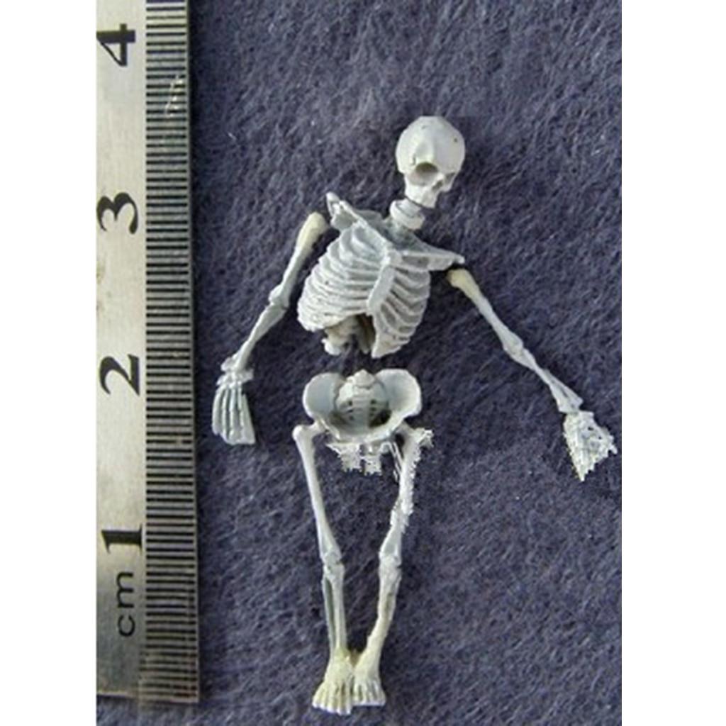 Model-Kit Miniature-Skull-Skeleton-Figurine Toys Scenery for Sand-Table Building-Toy