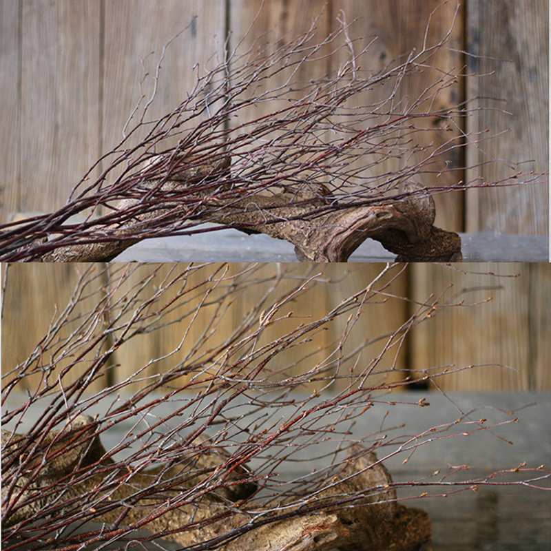 8 pezzi di betulla naturale rami secchi rami di fiore - Rami secchi per decorazioni ...