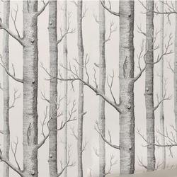 ورق حائط بنقشة شجرة البتولا غير منسوج ، لفة ورق حائط بتصميم حديث ، ورق جدران بسيط أبيض وأسود لغرفة المعيشة