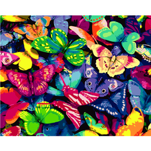 DIY Oil painting by numbers canvas picture butterfly