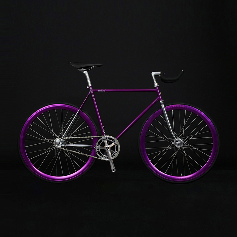 Fixed Gear Bike  Chrome-molybdenum Steel Frame  700C  Track  Bicycle Single Speed Bike 48cm 52cm  Fixie Bike Vintage