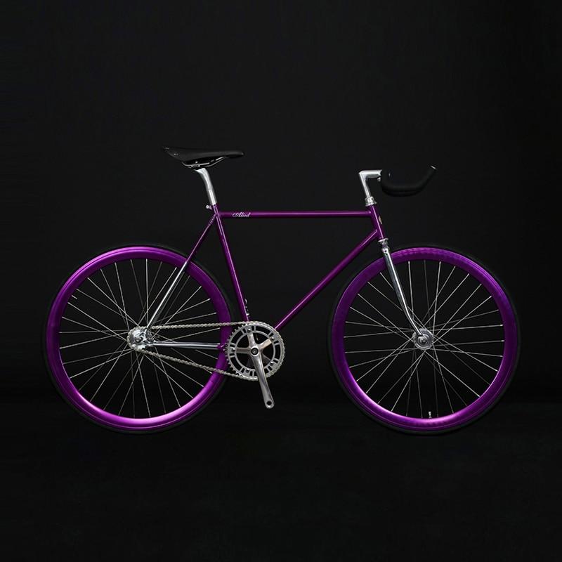 Fixed Gear Bike  Chrome-molybdenum Steel Frame  700C  Track  Bicycle Single Speed Bike 48cm 52cm  Fixie Bike Vintage