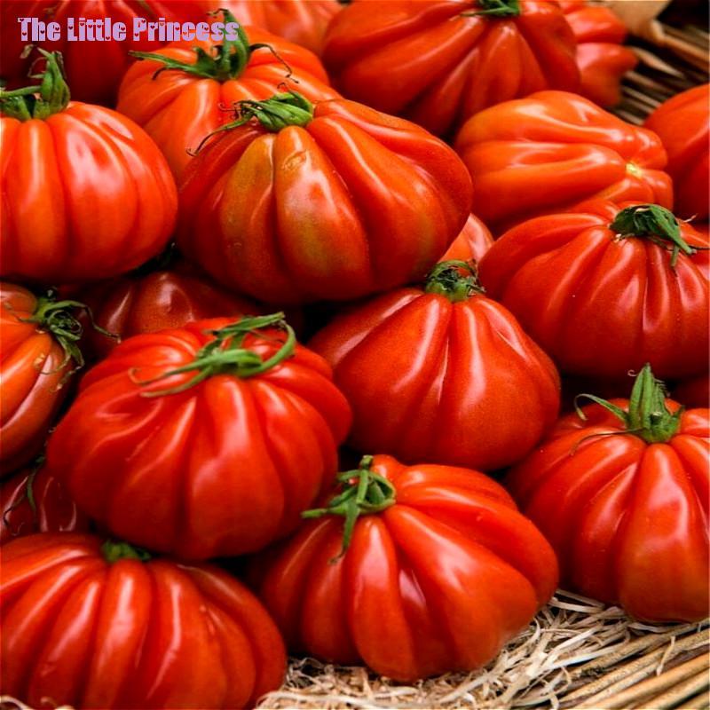 ᐊ100pc Big Zapotec Ruffled Tomato 169 Seeds Seeds Rare