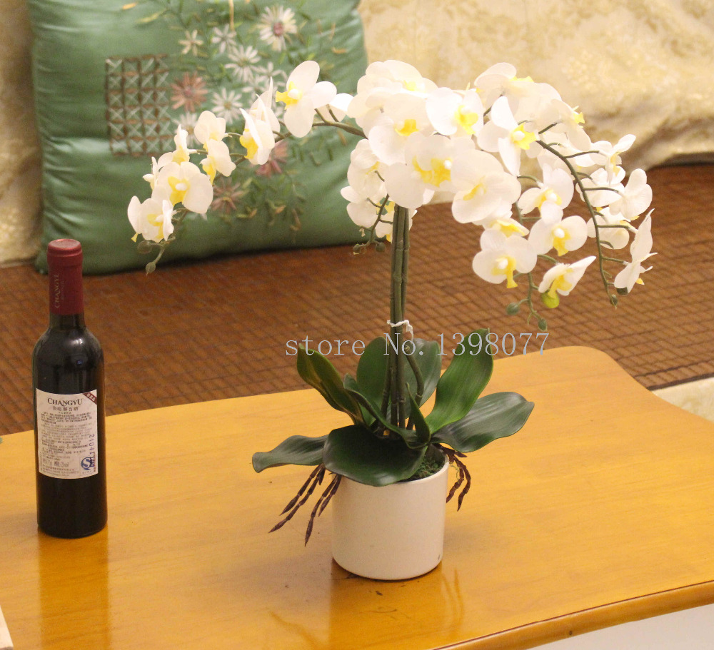 Compare prices on real touch orchids arrangements online