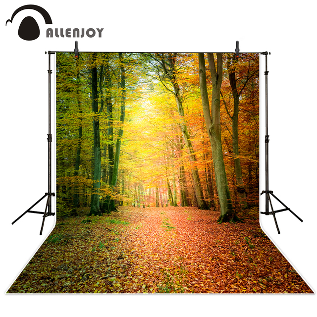 Allenjoy photography background Autumn leaves beautiful dream forest natural backdrop photo studio camera fotografica