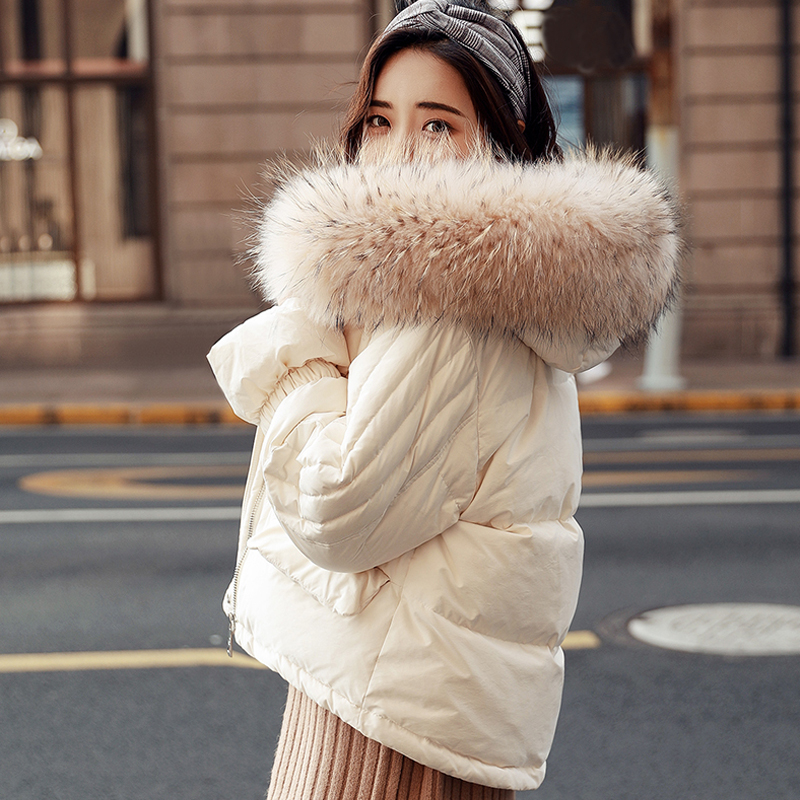 Big Real Natural Raccoon Fur 2018 Winter Jacket Women White Duck   Down     Coat   Women Warm   Coat   Female Hooded   Down   Parkas Outwear