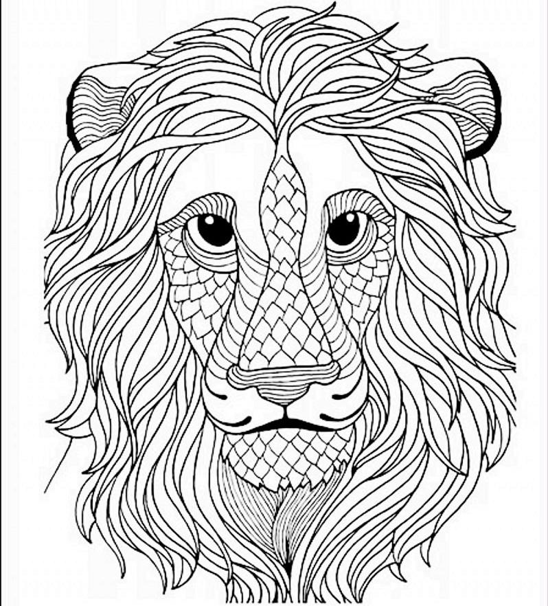 Secret Eden Coloring Book For Children Adult Antistress Art