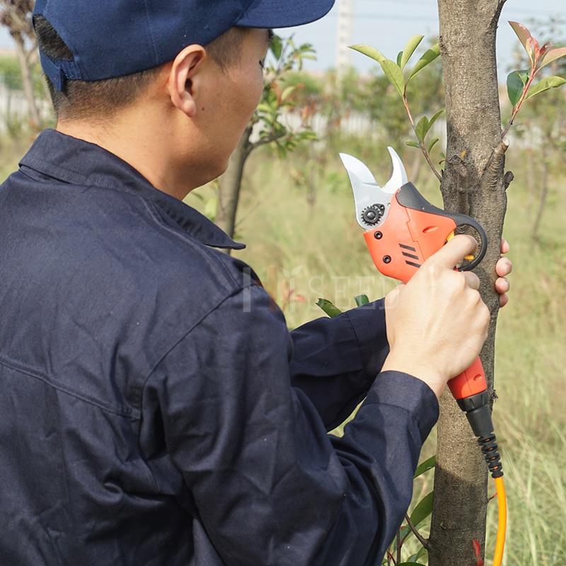 Kaltinių ašmenų sodo sodo genėjimo žirklės (CE sertifikatas - Sodo įrankiai - Nuotrauka 4