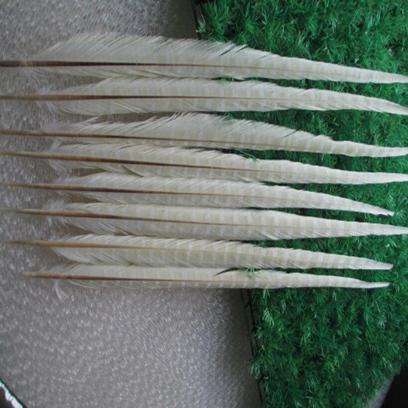 Groothandel 200/lot mooie witte fazant veren 20 22 inches/50 55 cm gratis verzending-in Veer van Huis & Tuin op  Groep 1