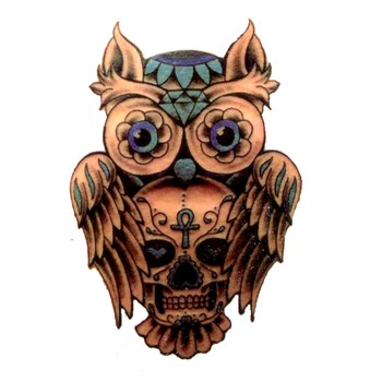 Skull Owl Waterproof Temporary Tattoo Sticker Fake Tattoo Tatuajes Kids Tatoo Harajuku The Flash Tattoo Bachelor Party image