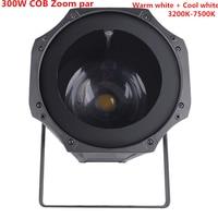 NEW LED Par 5 50 Degree LED Zoom 300W COB LED Par Light Warm White + cold White 2in1 RGBW 4in1 Stage Disco Light led Par 64