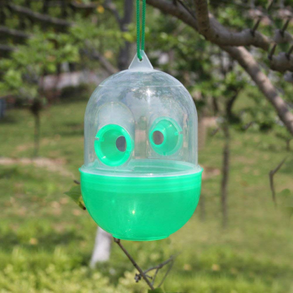 Image 2 - HOT Sale product 4Pcs Wasp Fly Flies Insects Hanging Trap Catcher Killer Outdoor Fly Catcher convenient and  practical-in Traps from Home & Garden