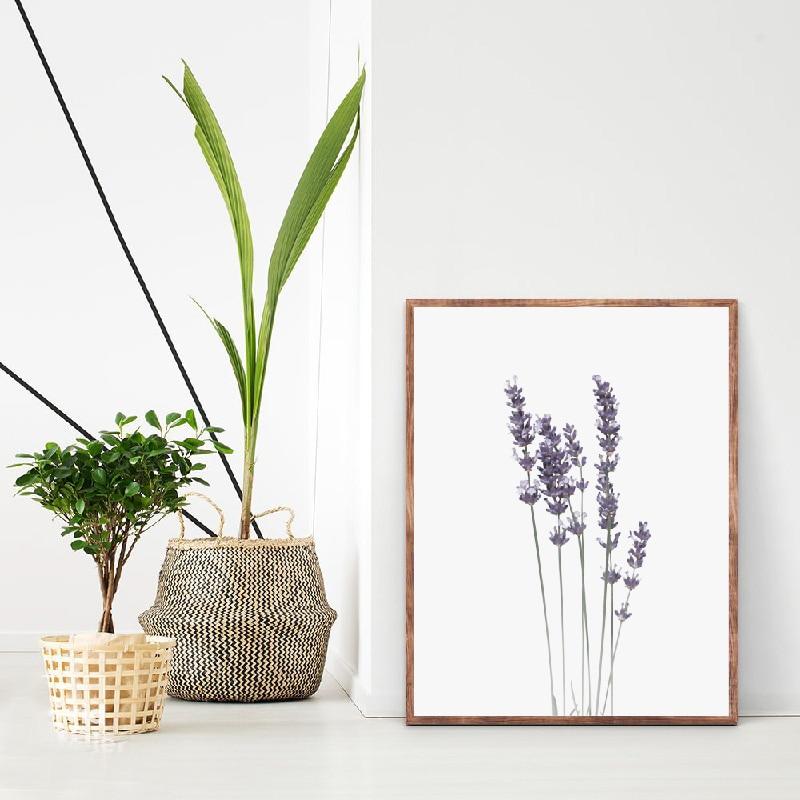 Eucalyptus Canvas Print Living Room Decor