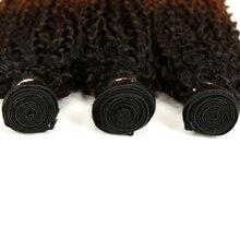 3/4 Pcs Ombre Peruvian Kinky Curly Hair Bundles Non Remy Three Tone Human Hair Bundles Deals Color 1B/4/27# 1B/4/30#