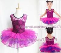 Swan Lake Ballet Costumes Leotard For Girls Puple Lace Children Dance Tulle Dress