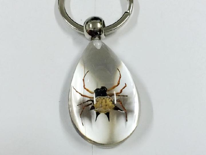 ᗑAlta calidad libre 12 unids nuevo Real Cool llavero insectos araña ...