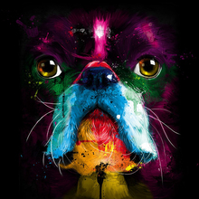 5D DIY Diamond Painting Cross Stitch Colorful dog Embroidery Full Square  embroidery Rhinestone Mosaic decor